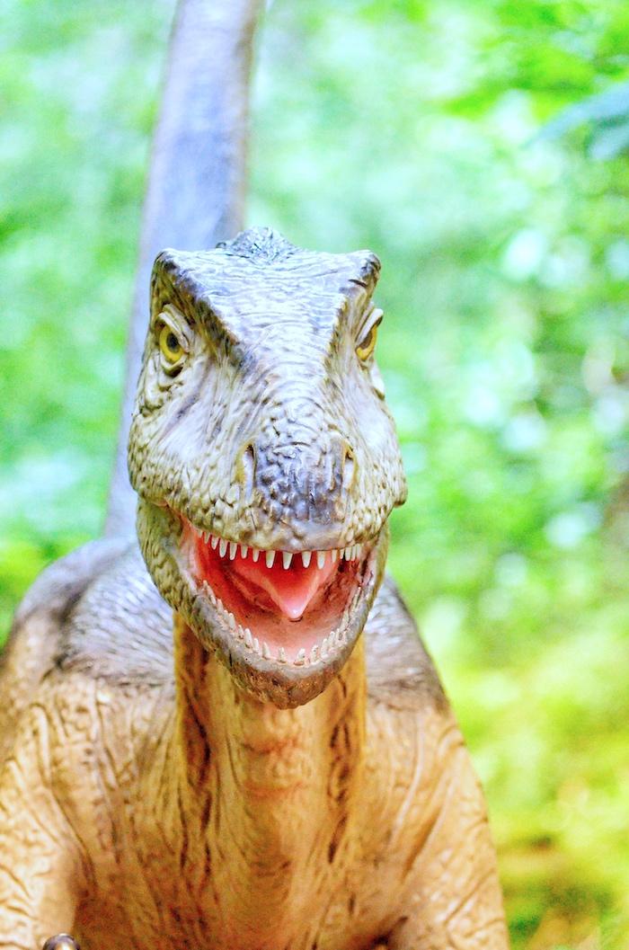 Dinosaurier im Dinopark Altmühltal