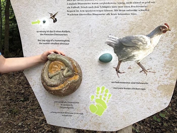 Infotafeln im Dinomuseum Bayern