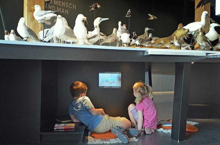 Wattenmeer Besucherzentrum Cuxhaven mit Kindern