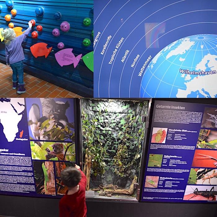 Infos zum Aquarium