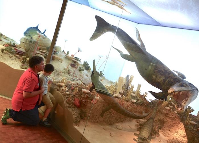 Urzeit Meeresbewohner