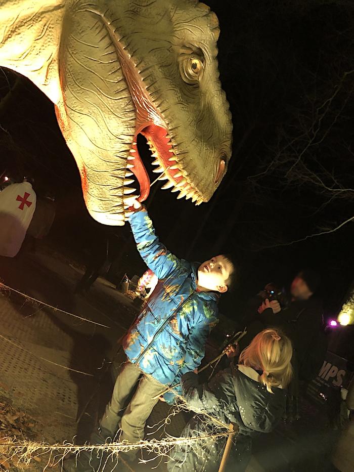 Weihnachtsmarkt mit Dinosauriern
