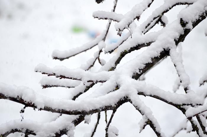 Packliste für den ersten Schnee