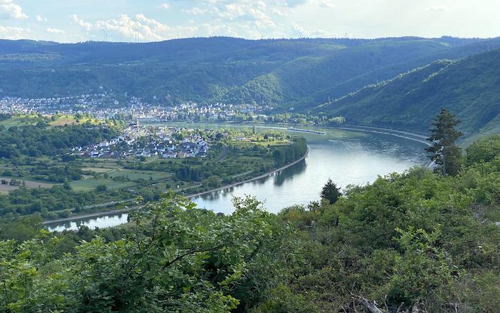 Ausblick von der Rheinterrasse auf die Rheinschleife