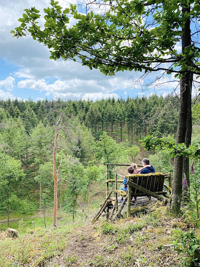 Wald bei Boppard