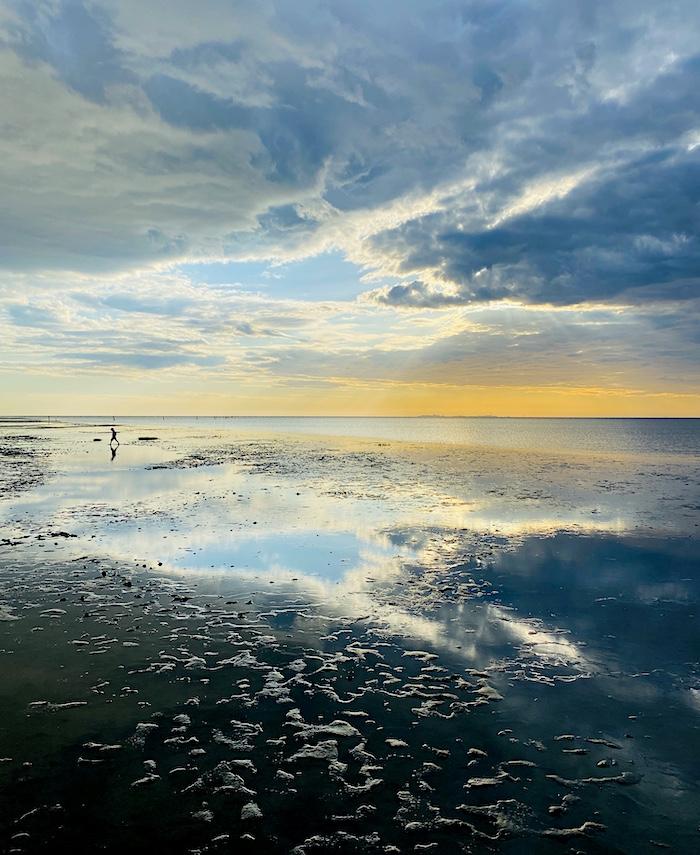 Blick aufs Wattenmeer