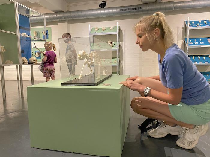 Elischeba im Naturkundemuseum Holterberg