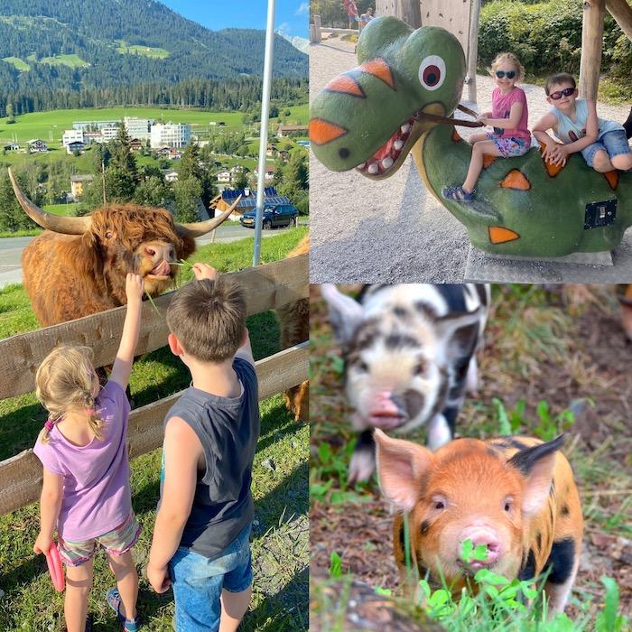 Urlaub im Pillerseetal - Collage