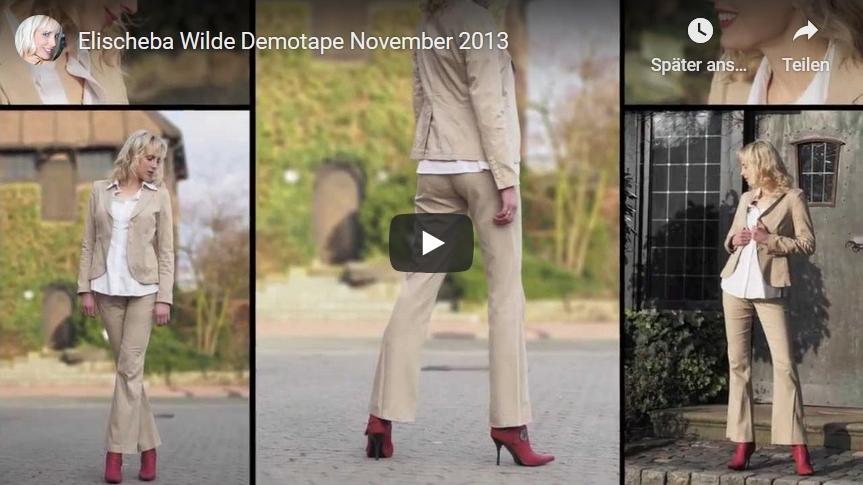 Elischeba Wilde - Demotape Moderation