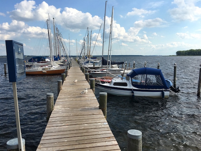 Hafen in Rerik