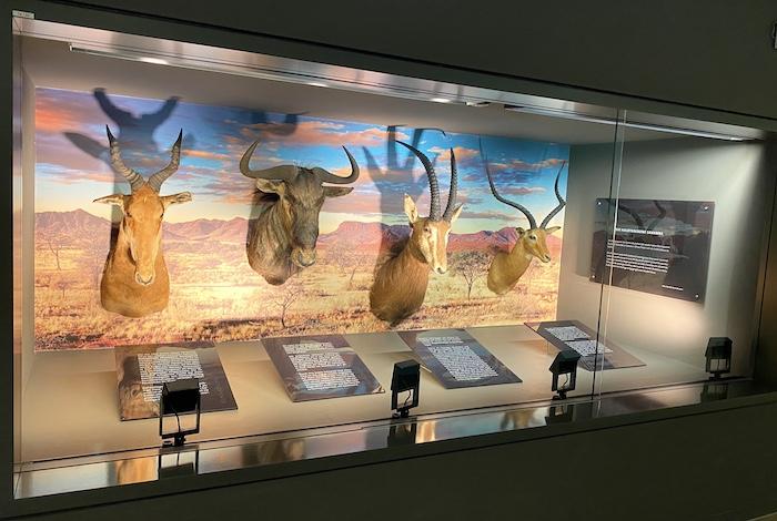 Jagdmuseum im Hotel Klosterhof Jakobsberg in Boppard