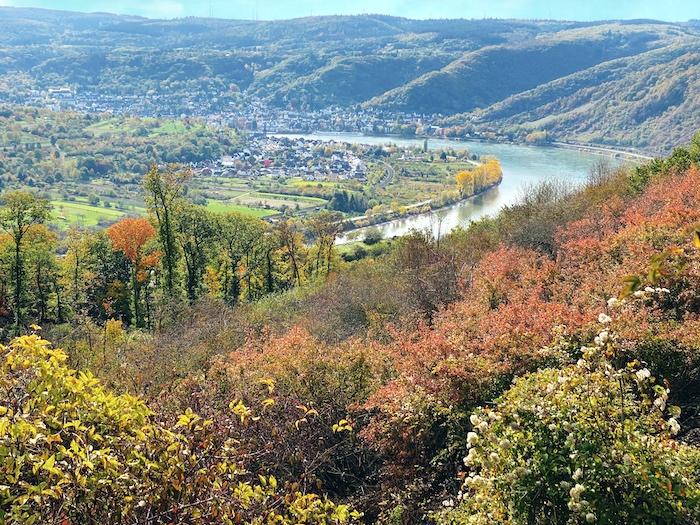 Jakobsberg im Herbst - Blick auf den Rhein