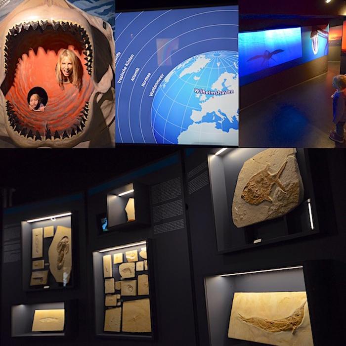 Urzeit Bereich im Aquarium Wilhelmshaven - Collage