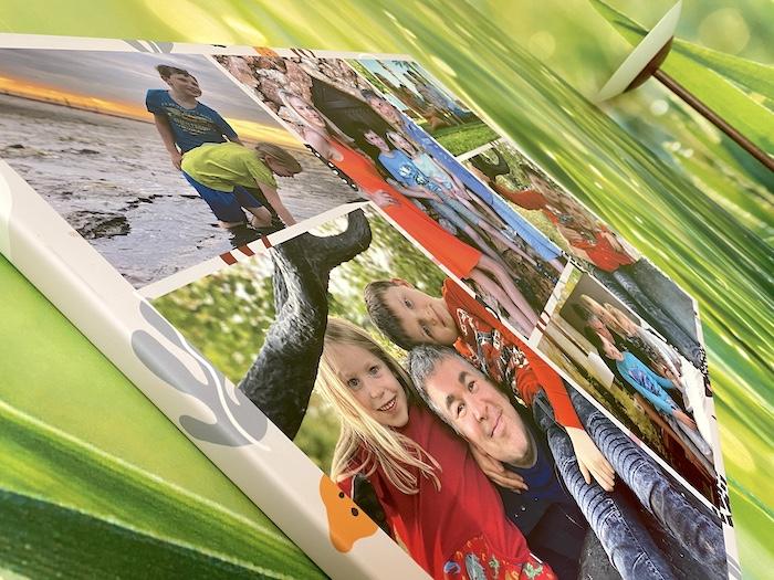 Fotos auf grüner Grastapete