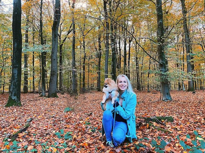 Herbst mit Hund - Elischeba Wilde