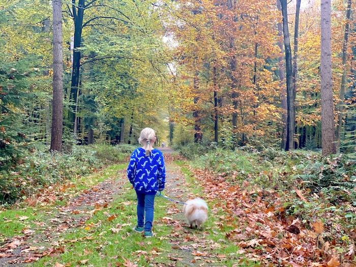 Kind alleine Gassi gehen mit Hund