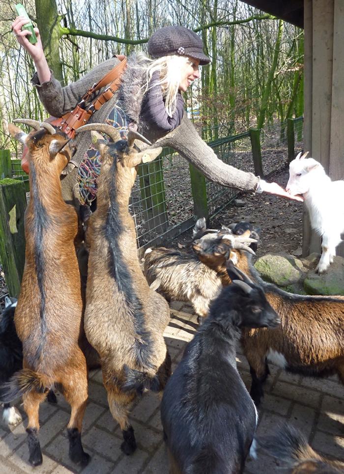 Elischeba beim Ziegen füttern