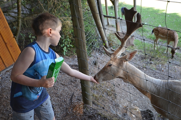 Ausflugstipps für Kinder im Sauerland
