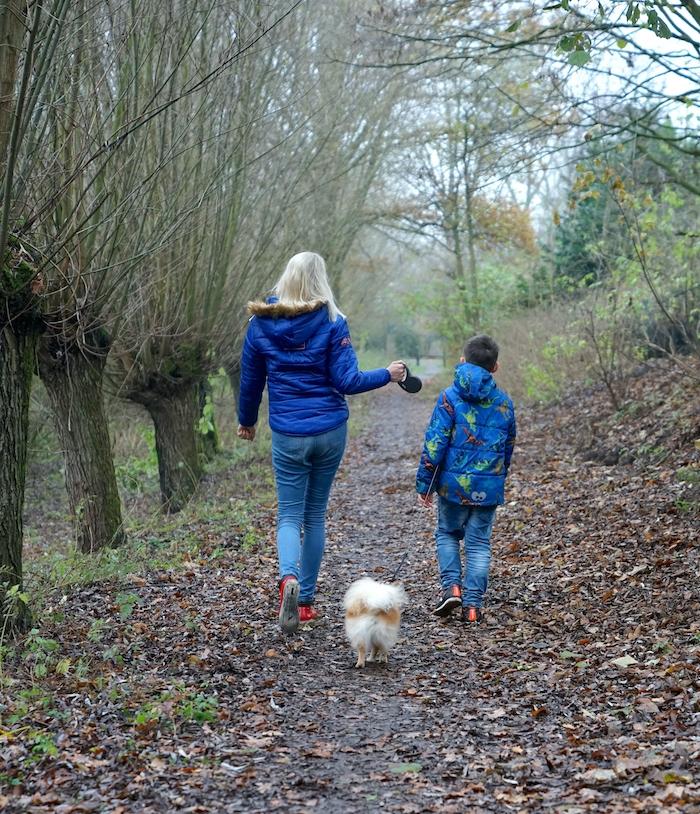 Spaziergang mit Hund im Dezember