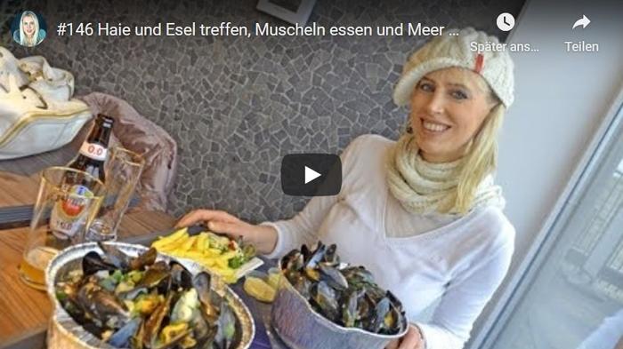 ElischebaTV_146 Haie und Esel treffen Muscheln essen und Meer - Elischeba in Zeeland im Winter