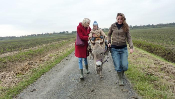Eselstour in Zeeland - Elischeba und Leon