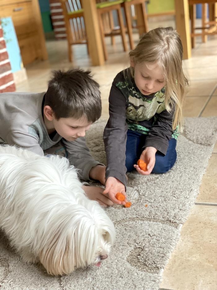 Hund Möhre geben - Bonnie und Kids