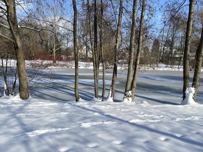 verschneite Winterlandschaft 2021