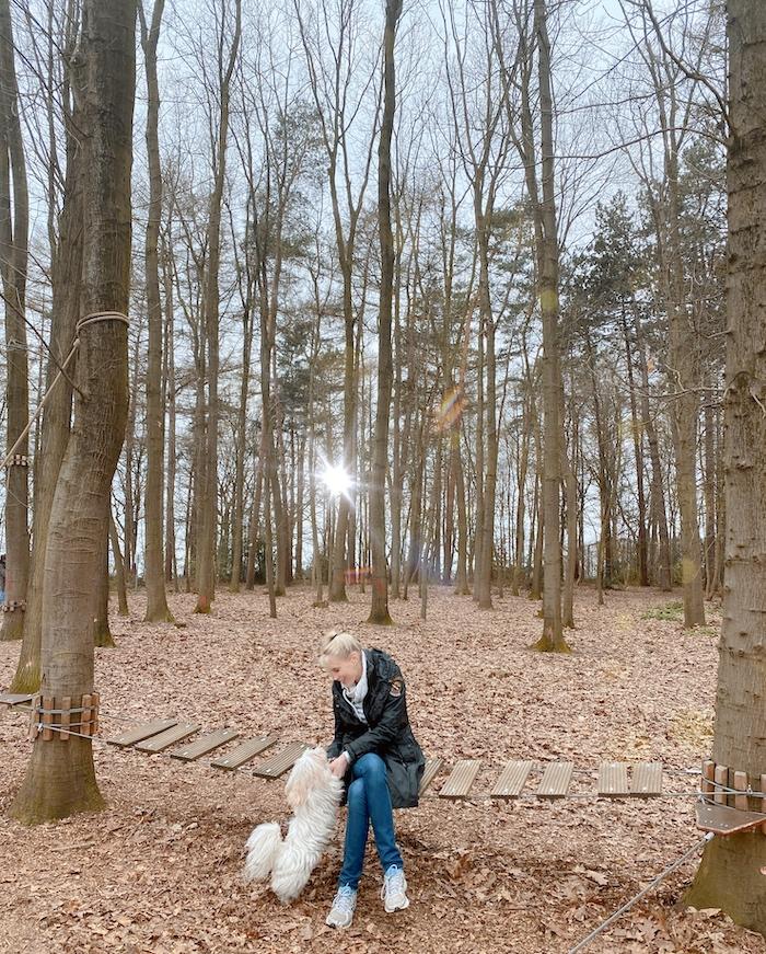 Ausflug mit Hund in NRW - Elischeba Wilde