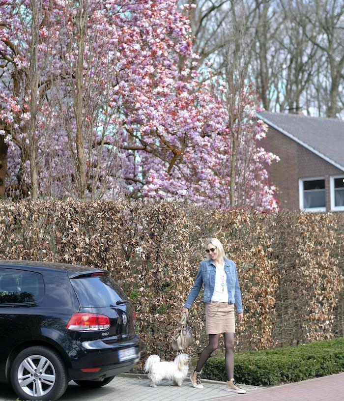Elischeba Wilde mit Hund - Frühling - rosa Blüten am Baum