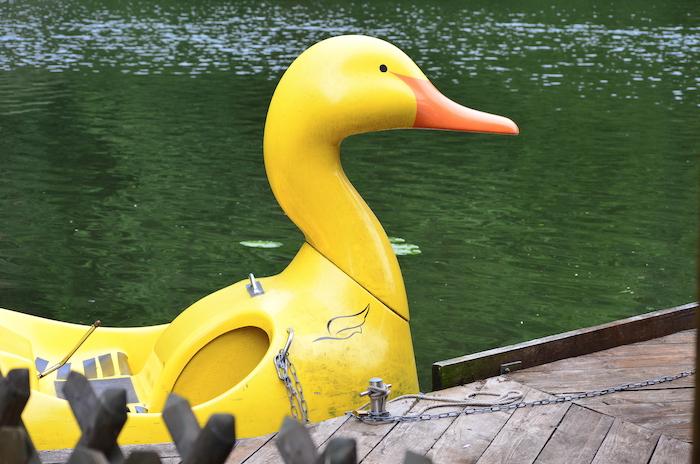 Bootsfahrt in Bad Sachsa