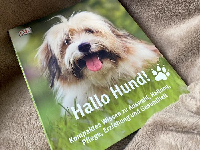 Hallo Hund aus dem DK Verlag