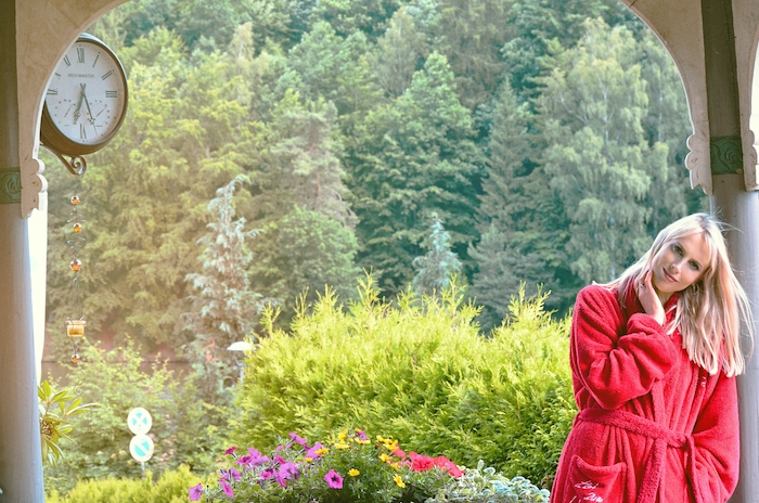 Elischeba Wilde - Romantik im Harz
