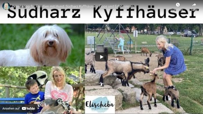 ElischebaTV_357 Südharz Kyffhäuser mit Hund